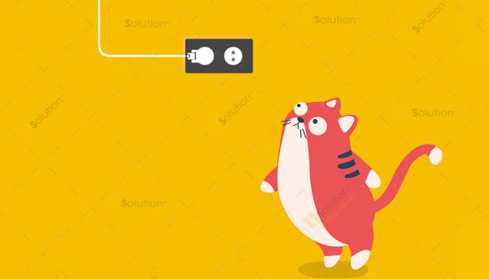 Mẹo ngăn chặn chó mèo cắn vào dây điện và ổ sạc trong nhà